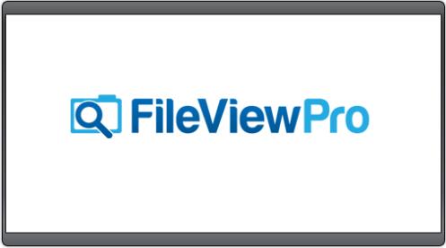 FileViewPro Crack