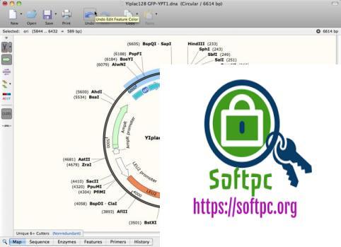 SnapGene 5.0.7 Crack + Keygen Free Download [2020]